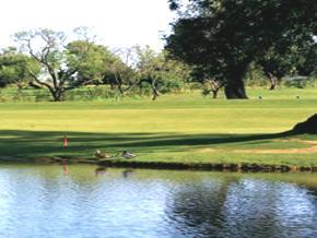 Portugal Quinta de Ria golf course Cacela Tavira Algarve discount reservation